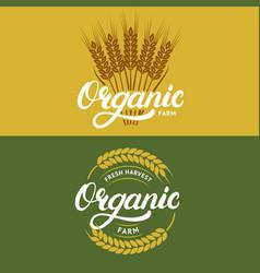 set organic farm hand written lettering logos vector image