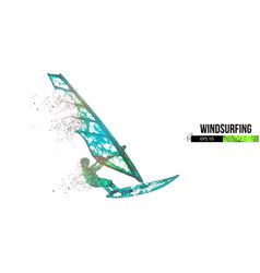 windsurfing silhouette a windsurfer freeride vector image