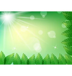 Green leaves in sunlight background vector image