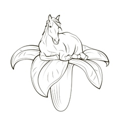 Horse on flower concept Hand Draw vector image