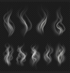 grey hot smoke clouds white transparent steam vector image vector image
