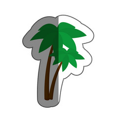 trees palms isolated icon vector image