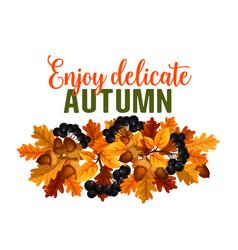 autumn oak acorn or rowan berry fall poster vector image