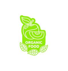 apple with slice bright line logo icon vector image