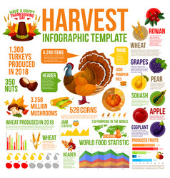 Autumn harvest infographic for thanksgiving design vector