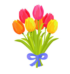 beautiful bouquet of seven multicolored tulips vector image