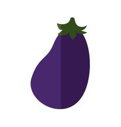 eggplant vegetable icon vector image
