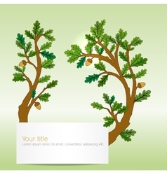 Oak leaves banner vector image