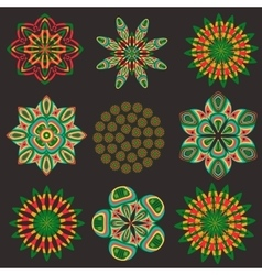 Set isolated of decorative floral elements vector image