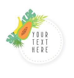 fruit sticker template vector image