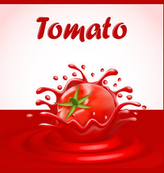 a splash of juice of a tomato vegetable vector image