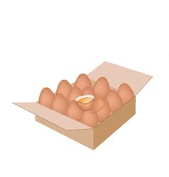 Fresh Chicken Eggs in A Shipping Box vector image vector image