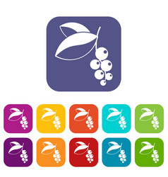 Currant berries icons set flat vector