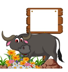 cute buffalo cartoon posing with blank board for y vector image