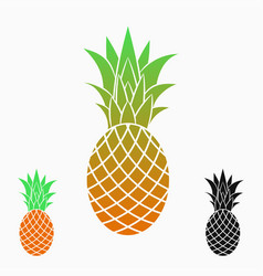 Pineapples or ananas exotic fruit vector