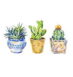 Set of flowers in pots indoor plants watercolor vector