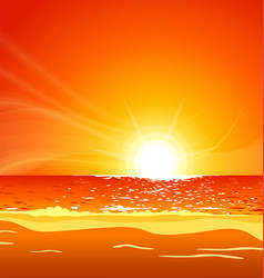 Warm tropical beach sunset vector