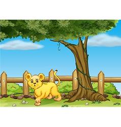 A young tiger under a big tree vector image