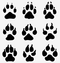 paw of dogs vector image