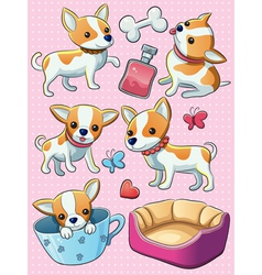 Chihuahua Puppy vector image