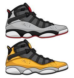 basketball shoes art vector image