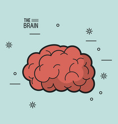 Colorful poster of the brain in light blue vector