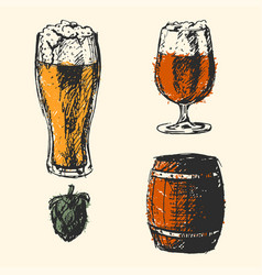 craft beer and pub sketch vector image