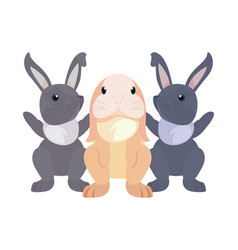 cute rabbits cartoon vector image