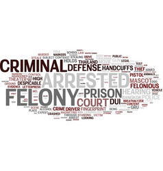 Felony word cloud concept vector