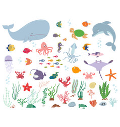 Sea animals and water plants vector