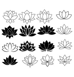 Set stylized lotuses collection lotus vector