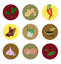 Spices set of colored icons vector