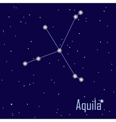 The constellation Aquila star in the night sky vector