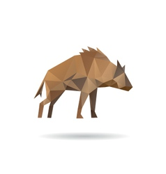Hyena abstract isolated vector image