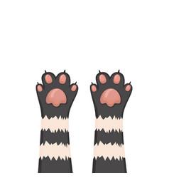 cats background kitten cartoon paws set vector image