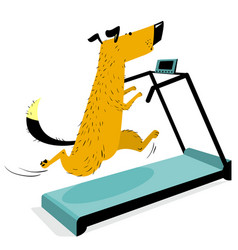 Fast running dog on treadmill cute racing pet vector