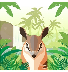 Numbat on the Jungle Background vector