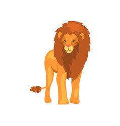 Powerful lion wild predatory animal vector