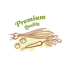 Premium quality badge design vector