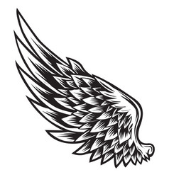 wings bird black white 011 vector image