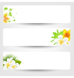 Banners With Flowers Frangipani vector image vector image