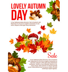 autumn sale promotion banner template design vector image vector image