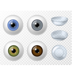 contact lens and human eye realistic human vector image