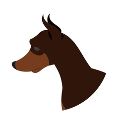 Dog head doberman pinscher vector image