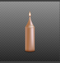 golden pink candle with burning wick isolated on vector image
