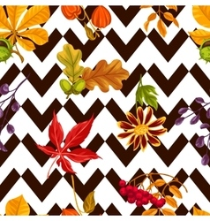 Seamless pattern with autumn leaves and plants vector image