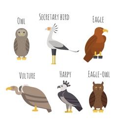 Set colorful birds prey icons owl vulture vector