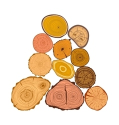Tree wood slices set vector