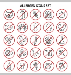 Set of allergen free products icons Insects and vector image