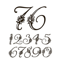handwritten calligraphic font set of vector image vector image